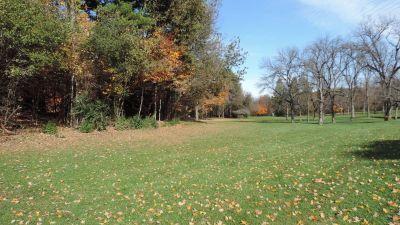 Anna Page Park, East, Hole 3 Long tee pad