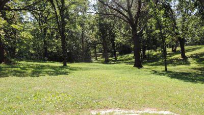 Anna Page Park, West, Hole 3 Tee pad