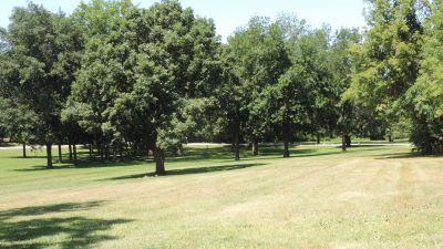 Anna Page Park, West, Hole 6 Tee pad