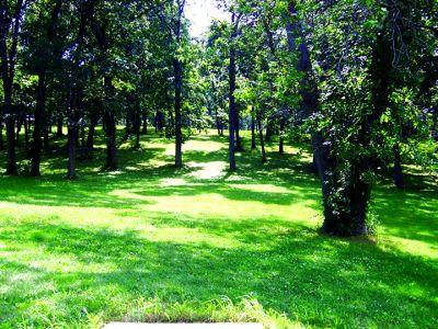 Anna Page Park, West, Hole 17 Tee pad