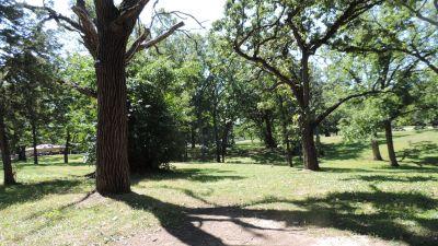 Anna Page Park, West, Hole 4 Tee pad