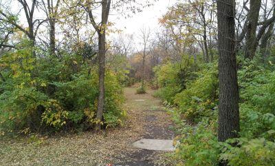 Woodlands, Main course, Hole 7 Long tee pad