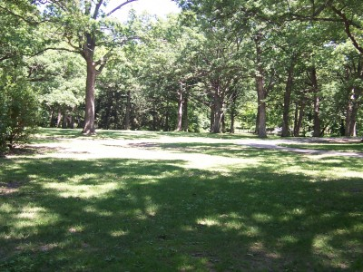 Sinnissippi Park, Main course, Hole 7 Tee pad