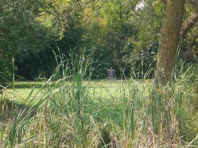 Shady Oaks Park, Main course, Hole 8 Midrange approach