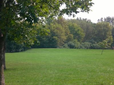 Shady Oaks Park, Main course, Hole 4 Long approach