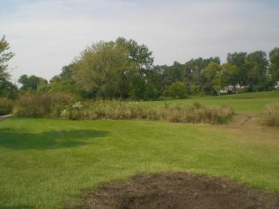 Shady Oaks Park, Main course, Hole 8 Tee pad