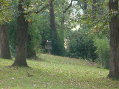 Shady Oaks Park, Main course, Hole 13 Midrange approach