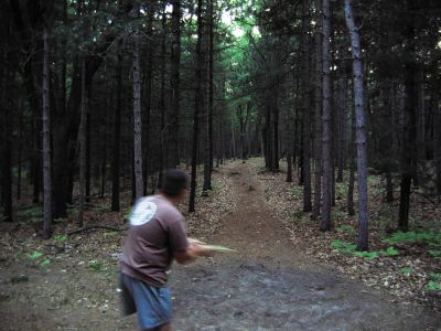 Whitehall Township DGC, Main course, Hole D8 Long tee pad