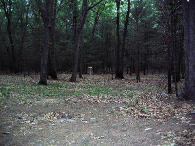 Whitehall Township DGC, Main course, Hole D2 Short approach