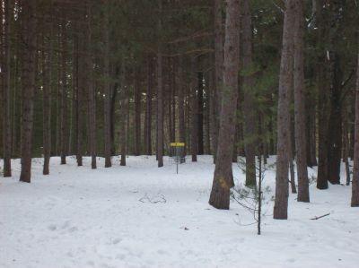 Whitehall Township DGC, Main course, Hole 3 Midrange approach