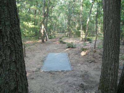 Whitehall Township DGC, Main course, Hole D4 Tee pad