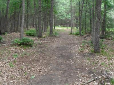 Whitehall Township DGC, Main course, Hole D7 Midrange approach
