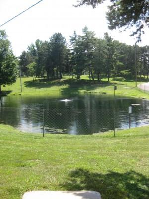Lake Shore Park, Main course, Hole 8 Long tee pad