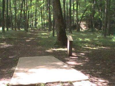 Pike Lake State Park, Main course, Hole 2 Long tee pad