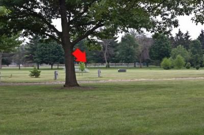Recreation Park, Main course, Hole 12 Short tee pad