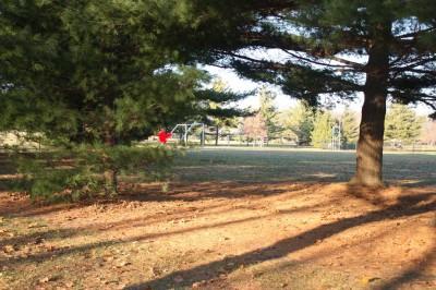 Recreation Park, Main course, Hole 8 Long tee pad