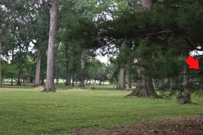 Recreation Park, Main course, Hole 18 Short tee pad
