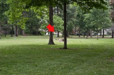 Recreation Park, Main course, Hole 17 Short tee pad