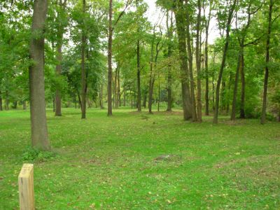 Aumiller Park, Main course, Hole 11 Tee pad