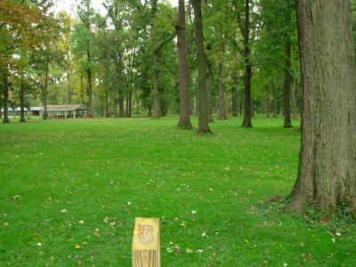 Aumiller Park, Main course, Hole 17 Tee pad