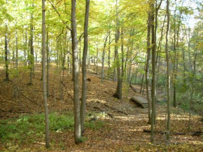 Aumiller Park, Main course, Hole 4 Midrange approach