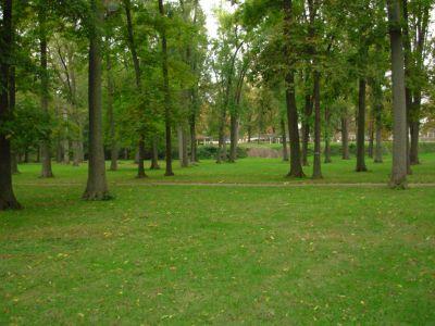Aumiller Park, Main course, Hole 16 Tee pad