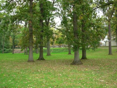 Aumiller Park, Main course, Hole 18 Tee pad