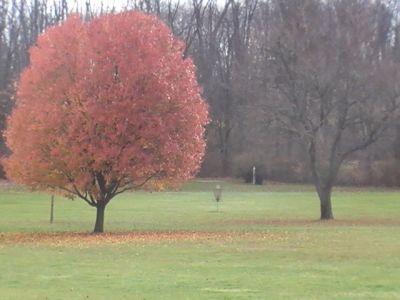 Arboretum-Spiker Park, Main course, Hole 8 Midrange approach