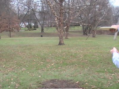 Arboretum-Spiker Park, Main course, Hole 24 Short tee pad