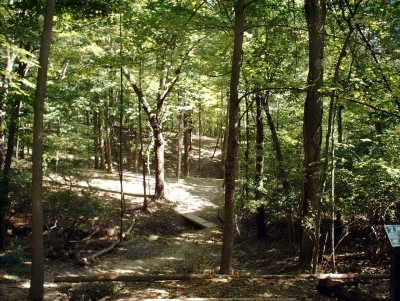 Mt. Airy Forest, Main course, Hole 7 Tee pad