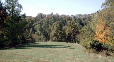 Mt. Airy Forest, Main course, Hole 2 Midrange approach
