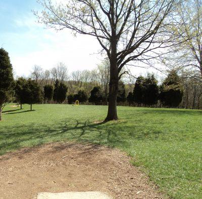 Woodland Mound Park, Main course, Hole 15 Tee pad