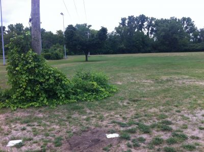 Water Works Park, Main course, Hole 7 Middle tee pad