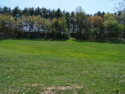 Deis Hill Park, Main course, Hole 13 Short tee pad