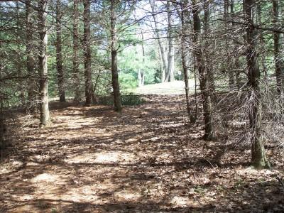 Deis Hill Park, Main course, Hole 7 Long tee pad
