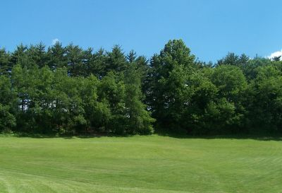 Deis Hill Park, Main course, Hole 13 Short tee pad