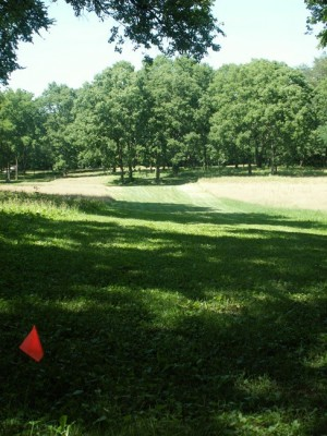 Englewood Metro Park, Main course, Hole 8 Tee pad