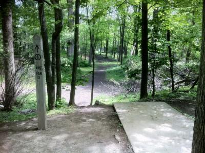 Sims Park, Main course, Hole 6 Tee pad