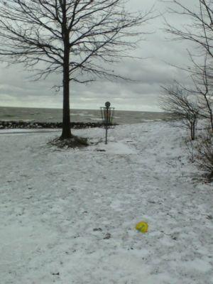 Sims Park, Main course, Hole 1 Putt