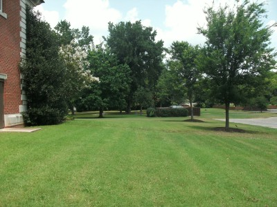 Athens State University, Main course, Hole 6 Tee pad