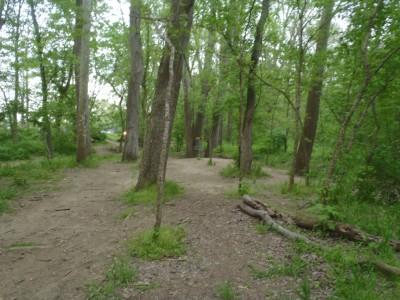 Twin Creek, Main course, Hole 9 Tee pad