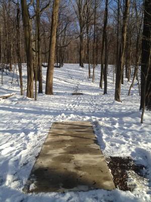 Hudson Springs Park, Main course, Hole 13 Tee pad