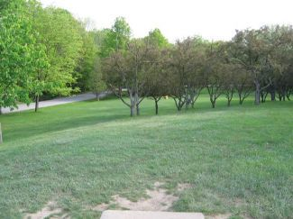 Hudson Springs Park, Main course, Hole 4 Tee pad