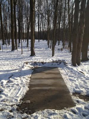 Hudson Springs Park, Main course, Hole 15 Tee pad