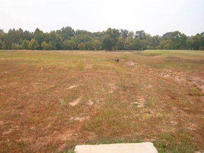 Athens Sportsplex, Main course, Hole 6 Short tee pad