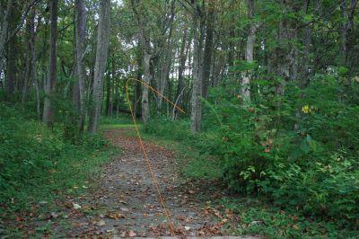 Marysville DGC, Main course, Hole 3 Long tee pad