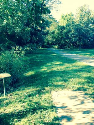 Marysville DGC, Main course, Hole 10 Tee pad