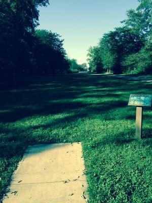 Marysville DGC, Main course, Hole 14 Tee pad