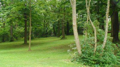 Lincoln Park (Oak Ledges), Main course, Hole 4 Tee pad