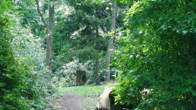 Lincoln Park (Oak Ledges), Main course, Hole 10 Tee pad